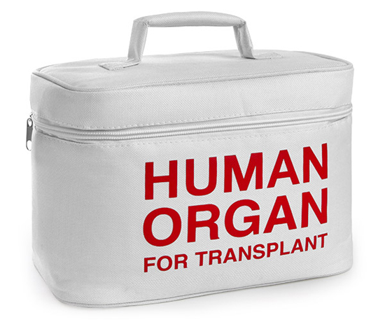 e72e_organ_transport_lunch_cooler_new